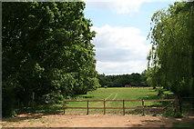 TQ1561 : Paddock off Prince's Drive by Hugh Craddock
