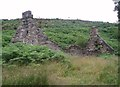 NJ1442 : Clashindarroch ruin by Dorothy Carse