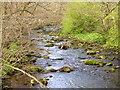 SE1880 : River Burn near Healey by Maigheach-gheal