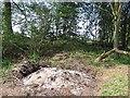 SO5788 : Ash pile by Richard Webb