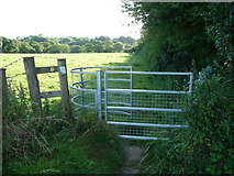 SM9809 : Kissing gate into cow pasture near Llangwm by Jeremy Bolwell