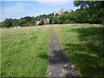 TQ1873 : Path on Petersham Meadows by Marathon