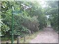 TQ4778 : Green Chain Walk near Bostall House by David Anstiss