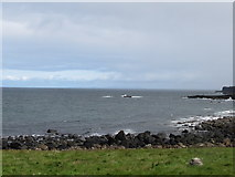 C9444 : Port Granny from the Giant Causeway service road by Eric Jones