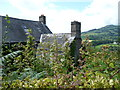 SO2419 : Part of Ty-canol farmhouse, above the Grwyne Fawr valley by Jeremy Bolwell
