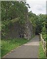 SS9084 : Old railway abutments by the Ogmore Valley Community Route by eswales