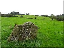 H6058 : Standing stone at Sess Kilgreen by Kenneth  Allen