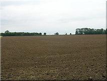 SE8317 : Farmland off Garthorpe Road by JThomas