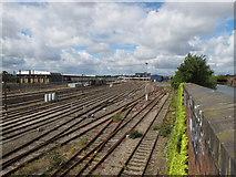 TQ2282 : Old Oak Common sidings by David Hawgood
