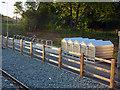 SJ8293 : Cycle parking at St Werburgh's Road Metrolink stop, Chorlton by Phil Champion