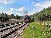SE8191 : George Stephenson Approaching Levisham Station by David Dixon