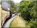 SE8394 : North Yorkshire Moors Railway, Approaching Newtondale by David Dixon