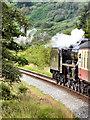 SE8495 : North Yorkshire Moors Railway, Leaving Pifelhead Wood by David Dixon