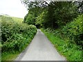 SO3177 : The lane to Pentre by Christine Johnstone