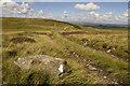SD7249 : Track on Easington Fell by Tom Richardson