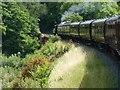 SO7679 : South-bound train crossing Victoria Bridge by Christine Johnstone