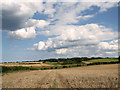 TG0543 : Great Hulver Hill as seen from Barn Drift, Cley by Evelyn Simak