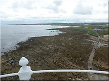 NZ3575 : Whitley Bay: view south from St. Mary's lighthouse by Chris Downer