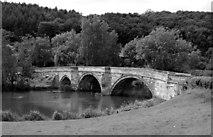 SE7365 : The Bridge at Kirkham Abbey by Andy Beecroft