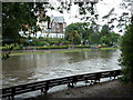 SZ0890 : Bournemouth: backs of benches in the flooded Gardens by Chris Downer