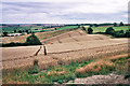 SK8002 : Tractor marks in a wheatfield by Stephen Craven