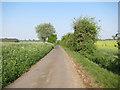 TL6156 : Westley Bottom Road by Hugh Venables