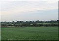 SJ6959 : Farmland at Moss Field Farm by John Firth