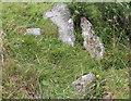 NR8297 : Stones atop a hillock near Cnoc-an-tealiaidh by Bob Embleton