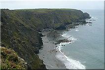 SW6521 : Along Halzephron Cliff by Graham Horn