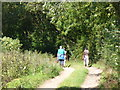 SP3421 : Oxfordshire Way by Dean Grove by Colin Smith
