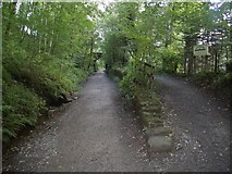 NY2824 : Keswick Railway footpath at Low Briery by Euan Nelson
