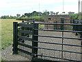 SK6046 : Pillbox near Arnold Lodge by Alan Murray-Rust