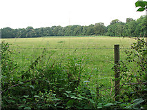 TG1312 : View towards Aves' Gap, Ringland by Evelyn Simak