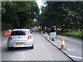 SJ8374 : Chelford Road roadworks by Colin Pyle
