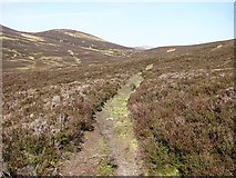 NN9670 : Path from Atholl to Strathardle by Richard Webb