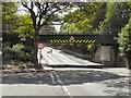SJ8984 : Bridge at Bramhall Station by David Dixon