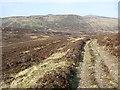 NN9871 : Track,  Allt Ruigh-chuilein by Richard Webb
