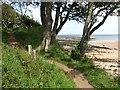 NU2516 : Northumberland coast path by Richard Webb