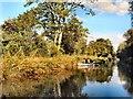 SU7352 : Canoe on Basingstoke Canal by Paul Gillett