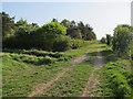 TL6046 : Harcamlow Way by Hugh Venables