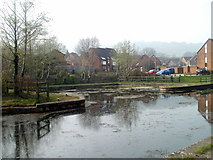 ST2896 : Small inlet on disused canal, Five Locks, Cwmbran by Jaggery