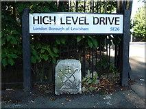 TQ3471 : High Level Bridge Mark by Roger W Haworth