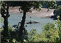 SX8754 : Anchor Stone by Derek Harper