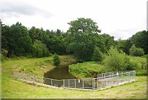 TL8031 : River Colne by Glyn Baker