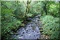 SN0334 : Afon Gwaun by Bill Boaden