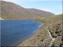 NN9874 : Path beside Loch Loch by Richard Webb