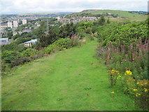 SE1025 : Footpath on Beacon Hill, Halifax by Chris Wimbush