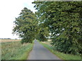 TF3103 : Dairy Drove, Middle Knarr Fen  near Thorney by Richard Humphrey