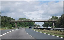 NZ2413 : Footbridge over the A1(M) near Low Coniscliffe by N Chadwick