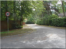 SU9266 : Fir Tree Close, South Ascot by Alan Hunt